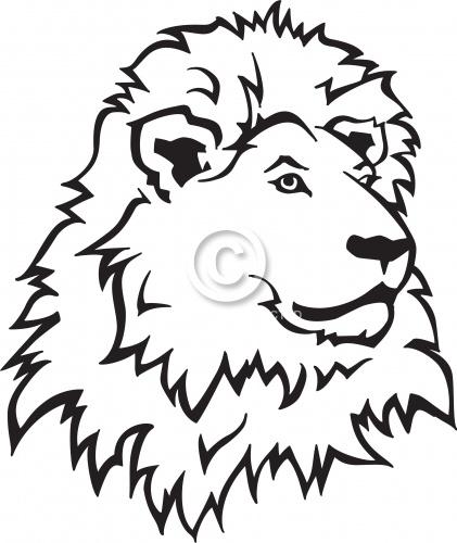 Lion 01