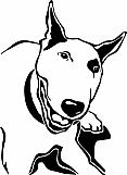 Bull Terrier 002
