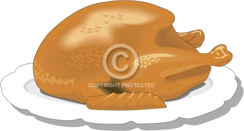 Roast Turkey 01