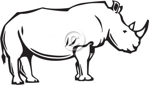 Rhinoceros 01