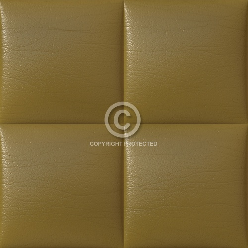 Leather Upholstery 05
