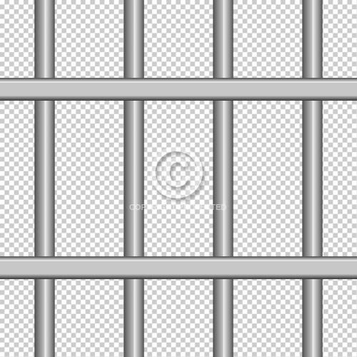 Steel Bars 08