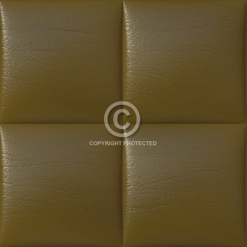 Leather Upholstery 06