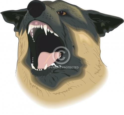 K-9 Police Dog 01
