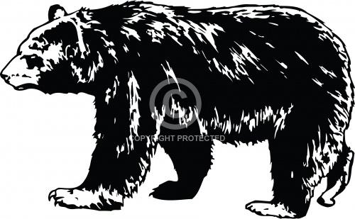 Bear 05