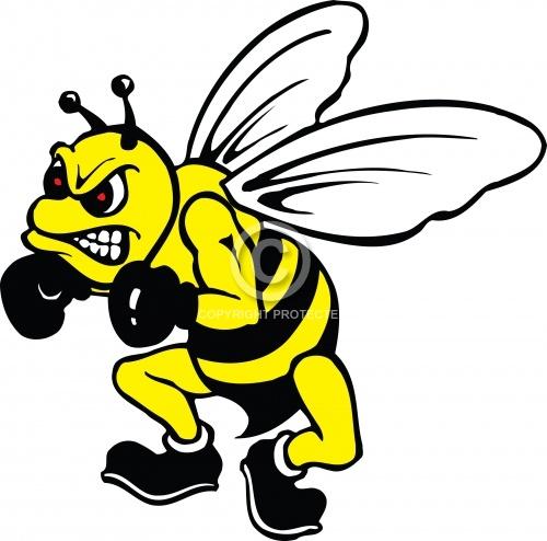Bee Mascot 02
