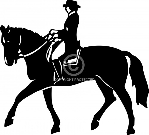 Horse and Rider 02