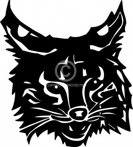 Wildcat 01