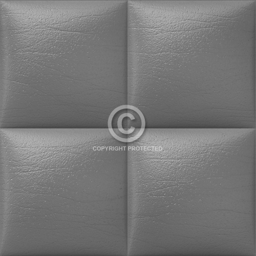 Leather Upholstery 08