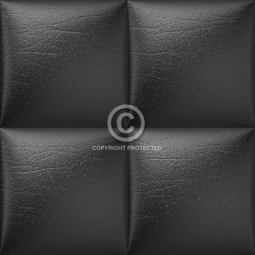 Leather Upholstery 09