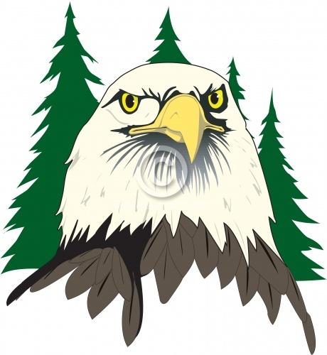 Eagle 08