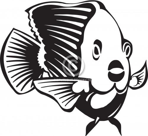 Tropical Fish 01
