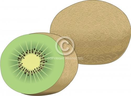 Kiwi Fruit 01