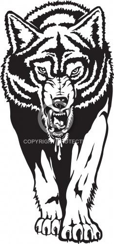 Wolf 05