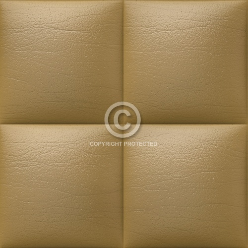 Leather Upholstery 01