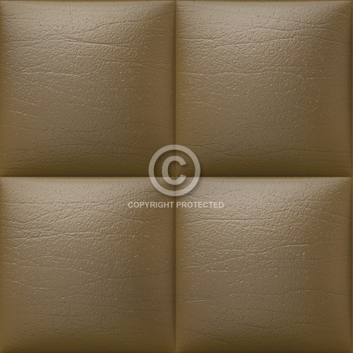 Leather Upholstery 02
