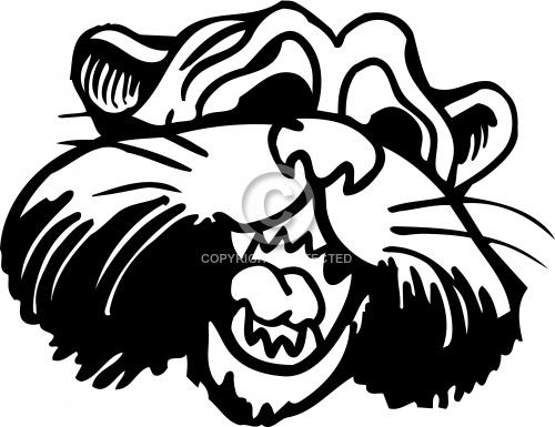 Panther 01