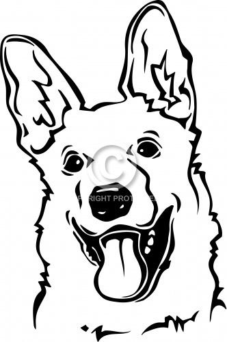 German Shepherd 02