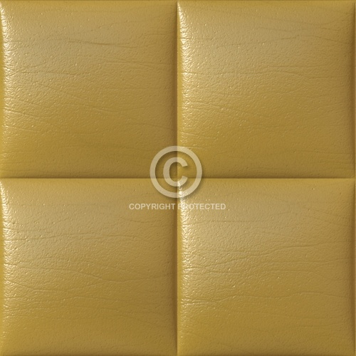 Leather Upholstery 04