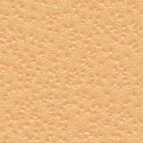 Citrus Skin 04