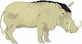 Warthog 01