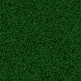 Carpet 08