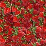 Strawberries 03