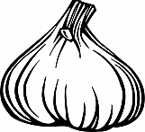 Garlic 01