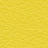 Citrus Skin 05