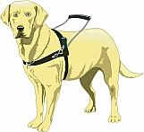 Guide Dog 02