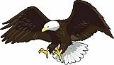 Eagle 14
