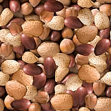 Mixed Nuts 01