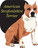 American Staffordshire Terrier 01
