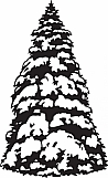 Snowy Fir Tree 01