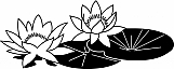 Water Lilies 01