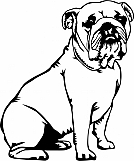 Bulldog 01