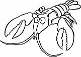 Crawfish 01