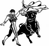 Bullfighter 01