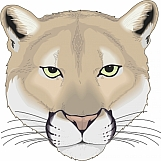 Cougar 03