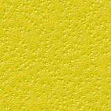 Citrus Skin 06