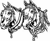 Horses 03