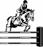 Horse Jumping 01