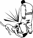 Attack Dog Training 02