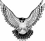 Falcon 02