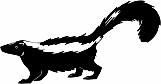 Skunk 01