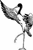 Crane 03