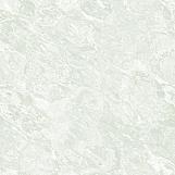 Ice 05