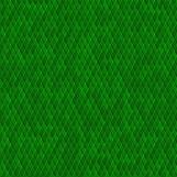 Snake Skin 06