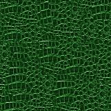 Crocodile Hide 02