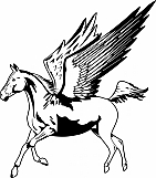 Pegasus 02